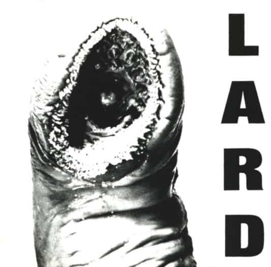 The Power of Lard – Lard